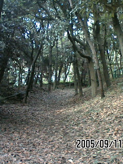 image/tenru-2005-09-24T13:27:41-4.JPG