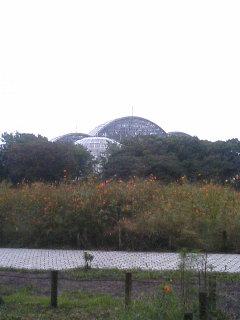 image/tenru-2005-10-17T01:42:19-1.JPG