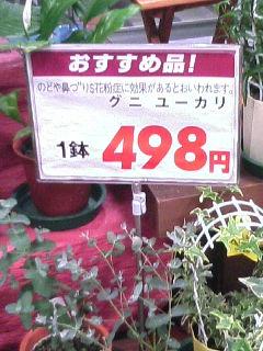 image/tenru-2006-03-12T08:48:36-1.JPG