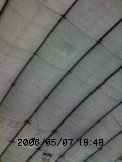 image/tenru-2006-05-07T19:56:28-2.jpg